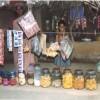 Galleria The Microcredit